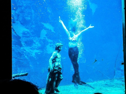 Weeki Wachee Springs, Florida.